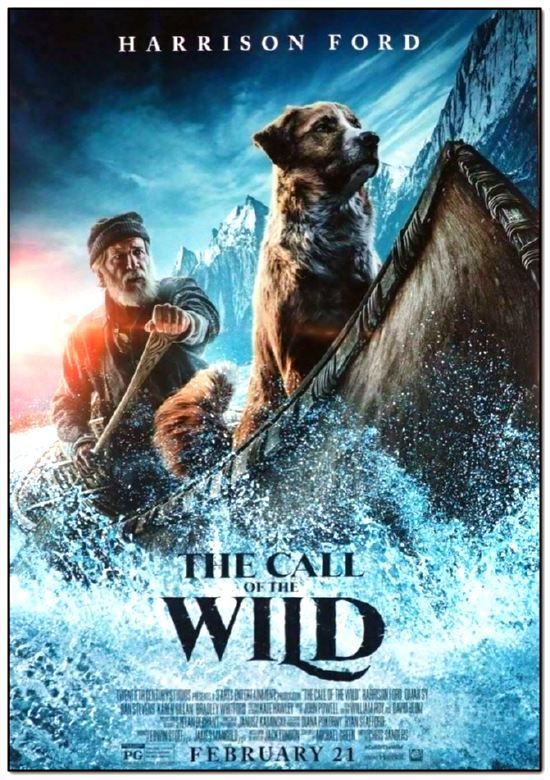 Call Of The Wild - 2020 - Final Style