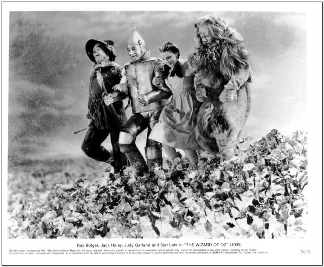 Wizard of Oz - Reproduction Photo #1